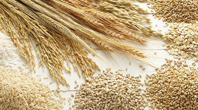 El esperado informe USDA, pese a que ha sido plano, corrige a la baja el precio del trigo.